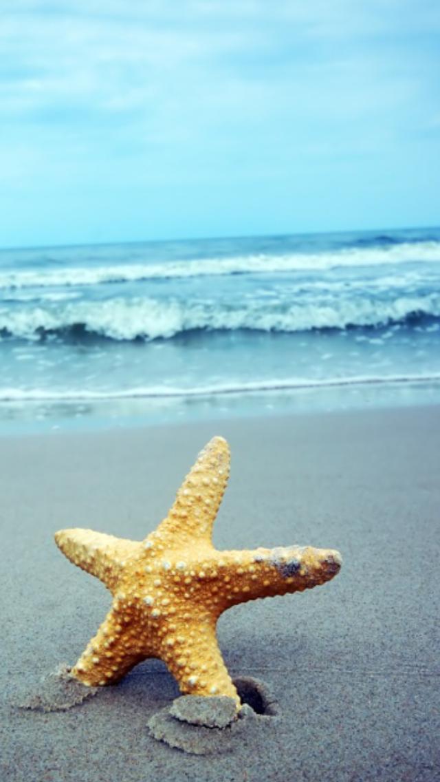 Sogno del mare