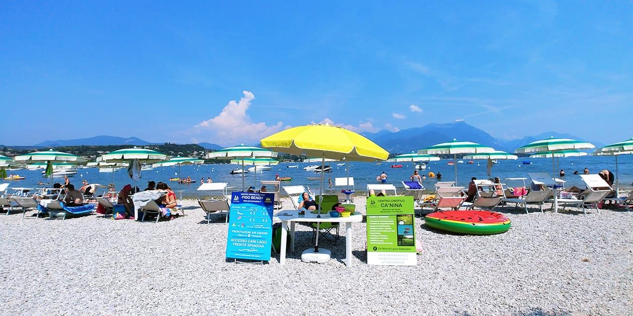 Fido Beach