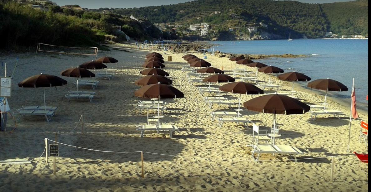 Net Beach