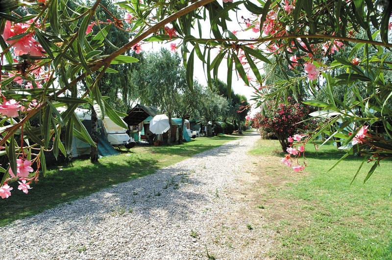 Tuscia Tirrenica Camping Village