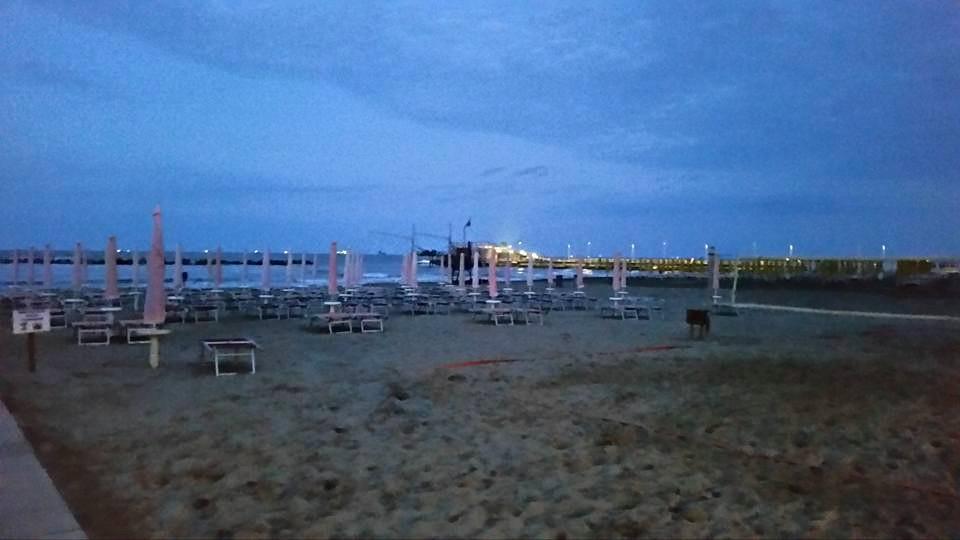 Bagno Ristorante Palm Beach