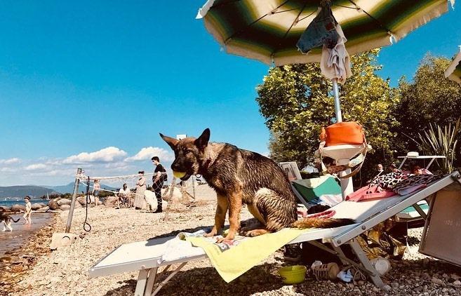 Fido Beach by Ca'Nina