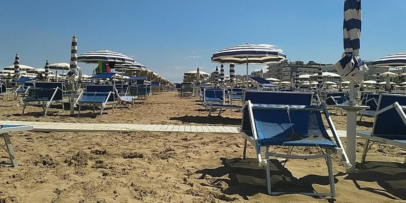 Sunflower Beach 95