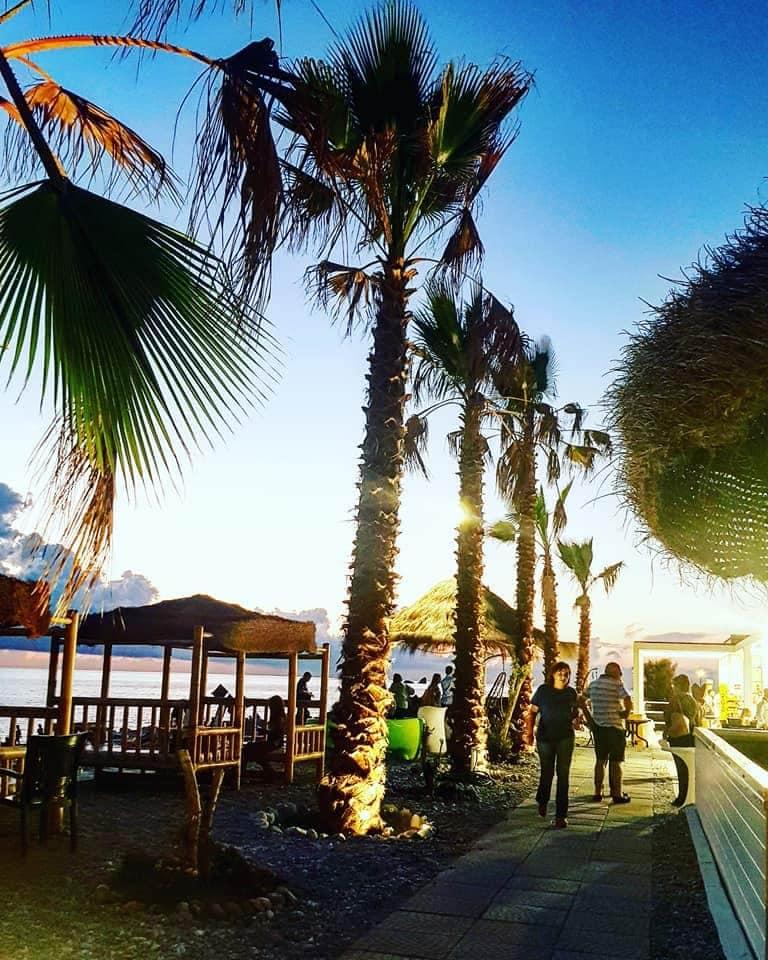 Micky Beach