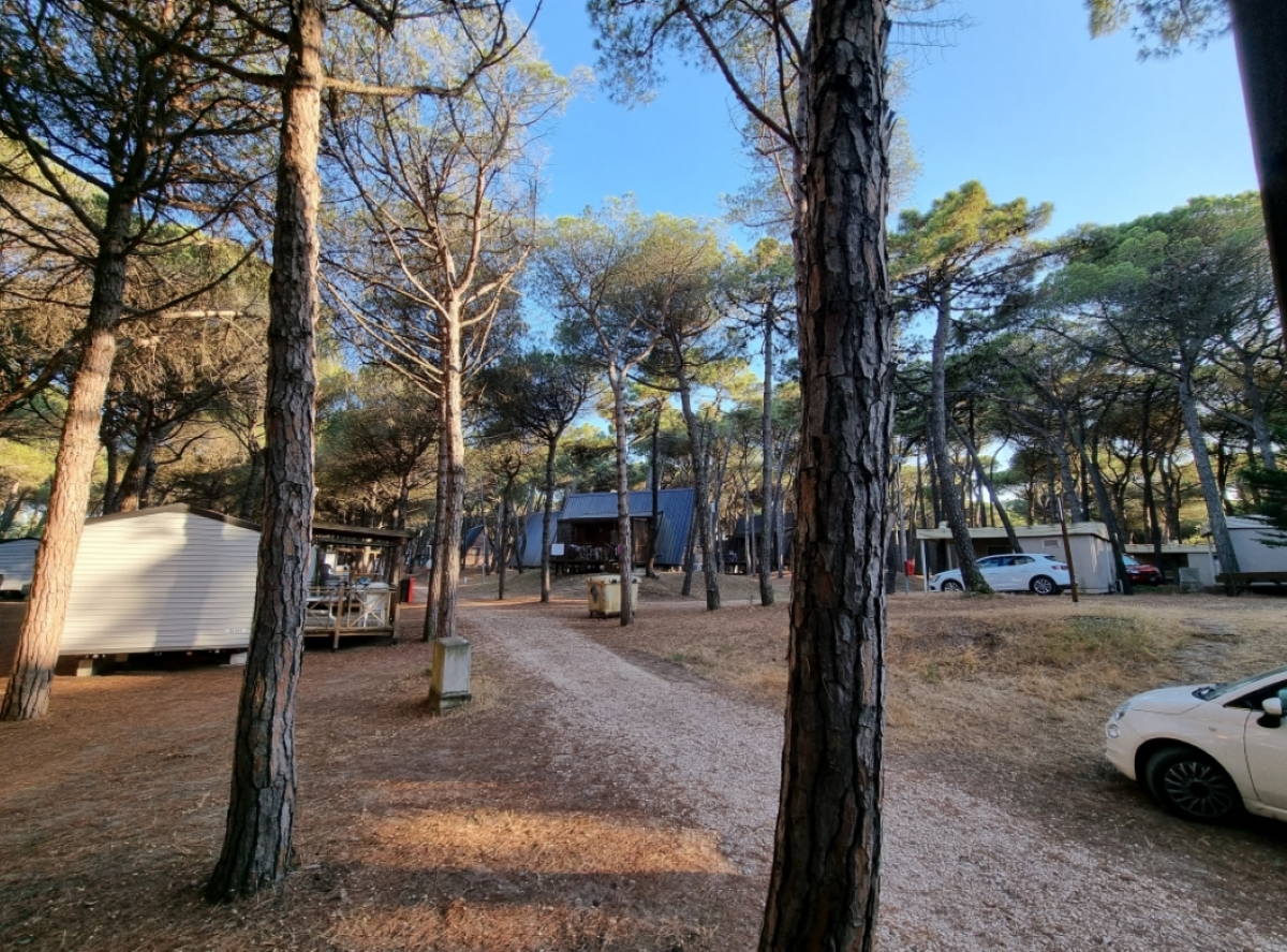 Family Camping Village