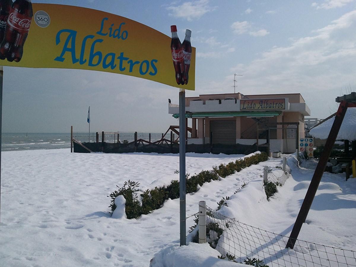 Lido Albatros