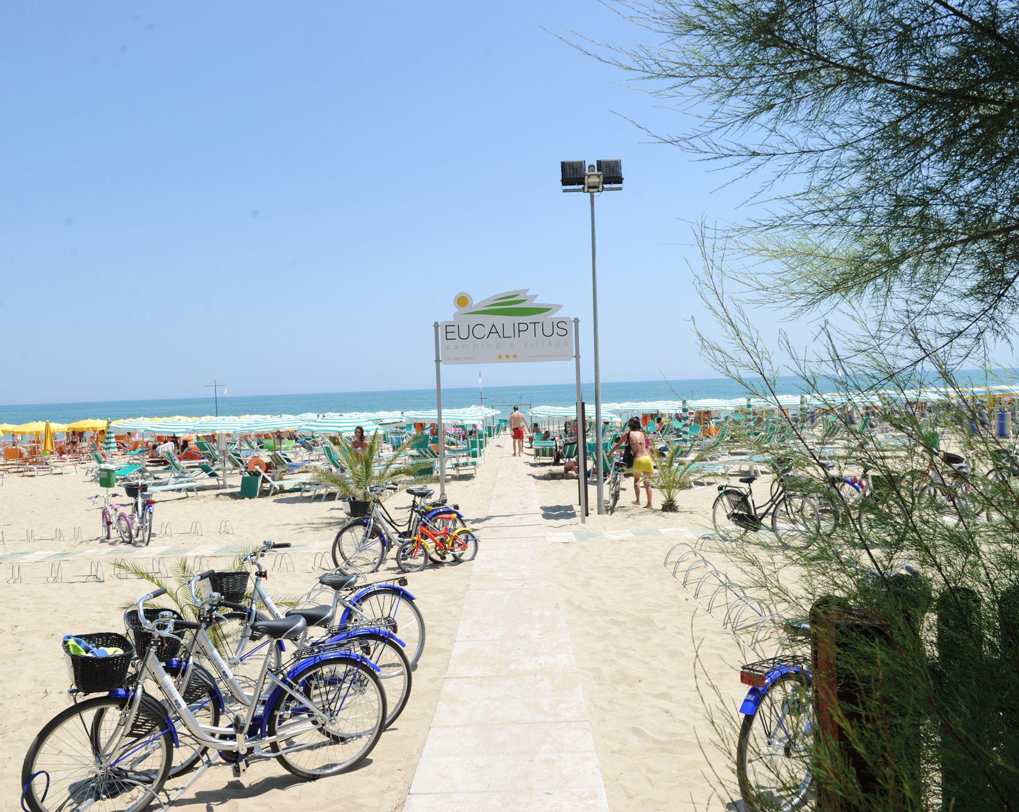 Eucaliptus Spiaggia