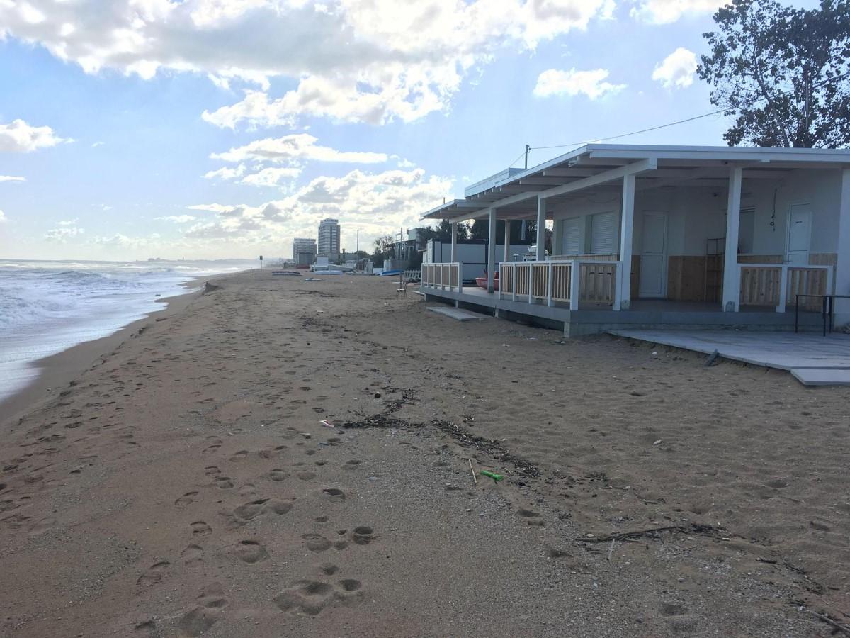 Barracuda Summer Fun Beach