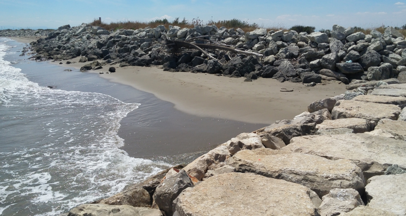 Spiaggia Libera Aperta Ai Cani