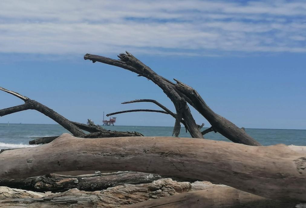 Spiaggia FKK - Lido Di Dante