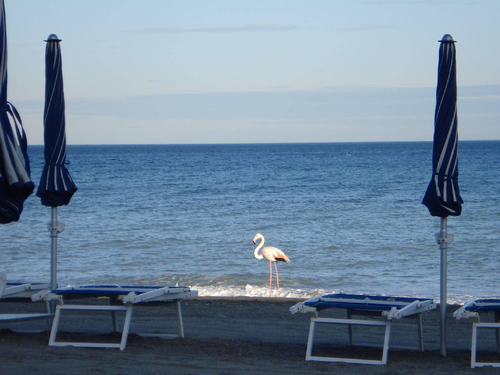 Bagni Doria